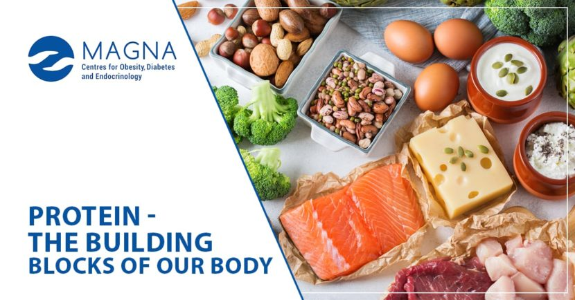 Importance of Proteins to our Body.